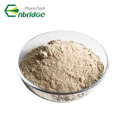 4-chloro-7H-pyrrolo[2,3-d]pyrimidine 99% 3680-69-1(3680-69-1)