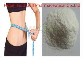 L- Carnitine Weight Loss Steroids Powder Without Side Effects