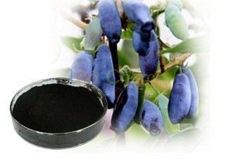 Anthocyanin extracts from Lonicera Caerulea