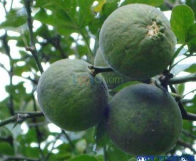 Hesperidin Citrus Aurantium Extract Tangerine Peel Extract Citrus bioflavonoid