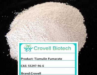 Hot sale Sodium formate with best price and high quality