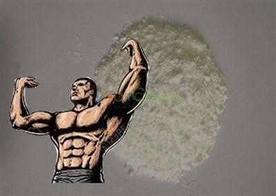 Steroid Powder Nandrolone Decanoate Bodybuilding CAS NO.360-70-3