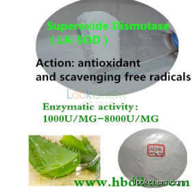 Superoxide dismutase Manufacturer/High quality/Modified SOD producing(9054-89-1)