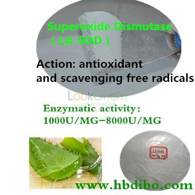 Superoxide dismutase Manufacturer/High quality/Modified SOD producing