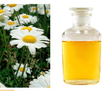 100% Pure Natural Pesticide Pyrethrum Extract 20% 50% 70% Pyrethrin in stock