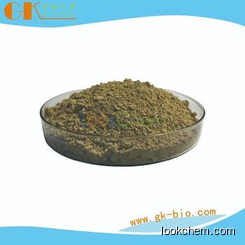 HoneySuckle Flowers Extract,Chlorogenic acid, pureCAS:327-97-9