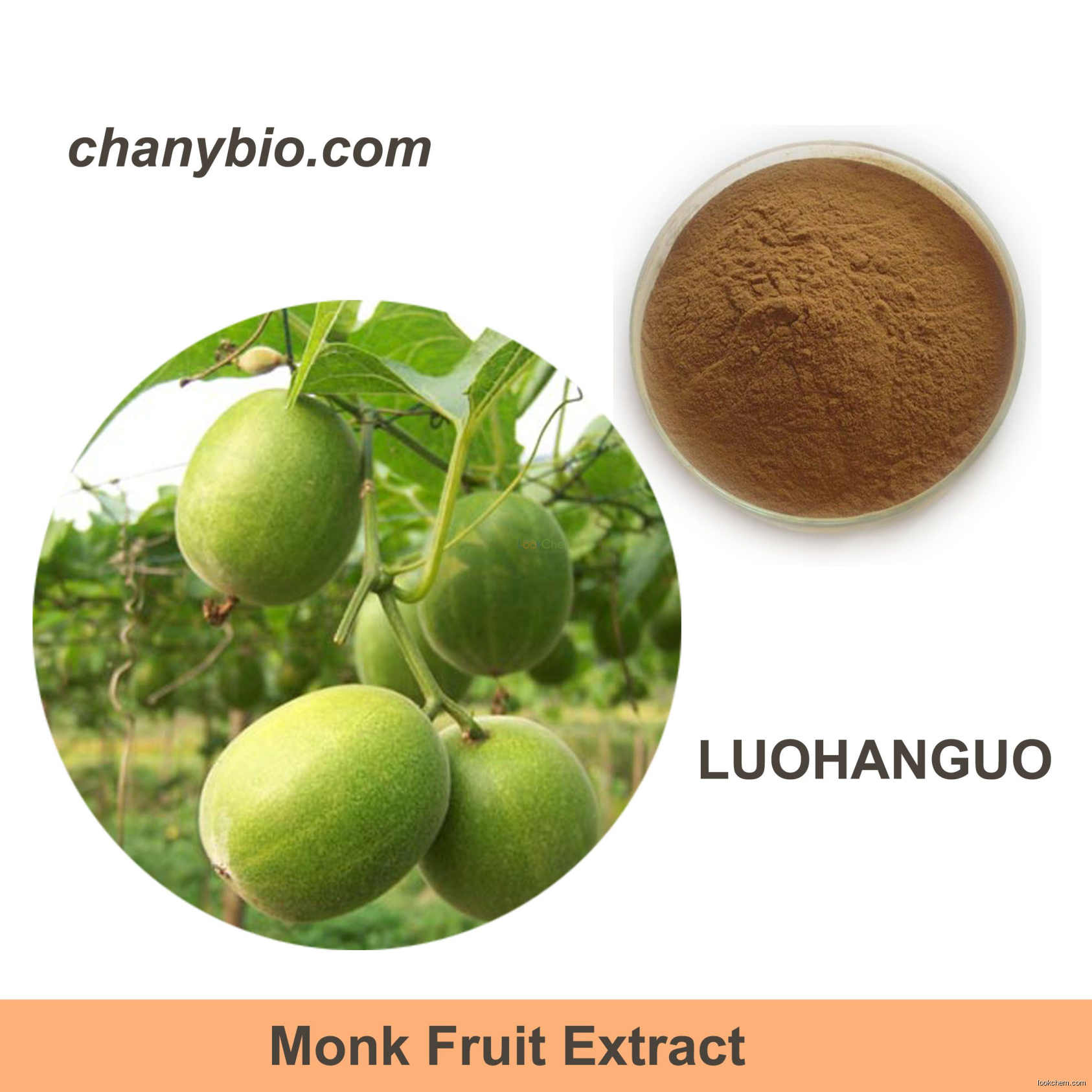 natural Monk fruit extract,LuohanGuo extract,Mogrosides,Mogroside V   sweetner