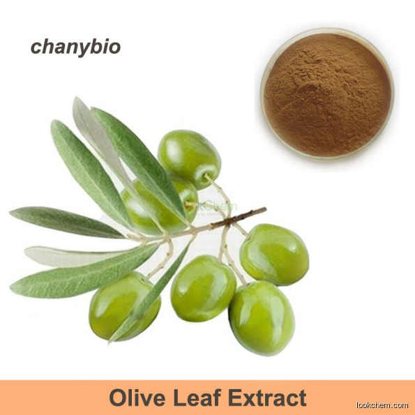 Factory HPLC 20% 40% 50% 60% Olive extract Olive Leaf Extract powder Hydroxytyrosol