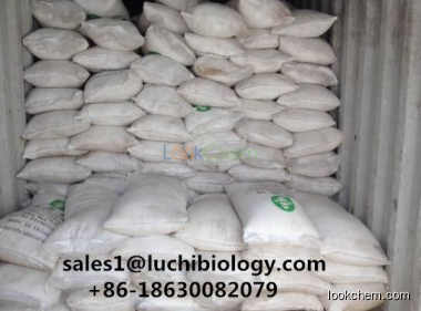 Disodium Phosphate (DSP) White Crystal Powder Food Grade
