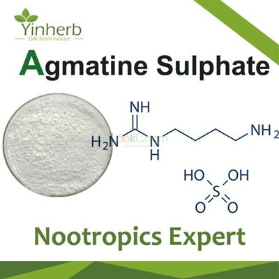 Agmatine Sulphate Nootropics powder
