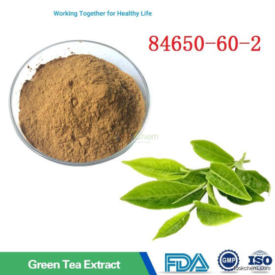 Free Sample 84650-60-2 with Anti Cancer and Antioxidant Green Tea Polyphenols 98%