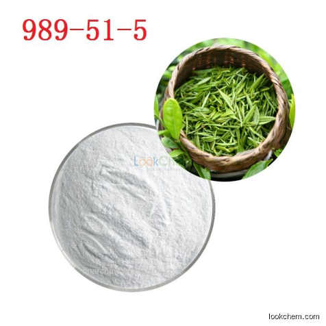 Manufacturer Wholesale price organic green tea extract 98% Polyphenols 98% EGCG 80% Catechins