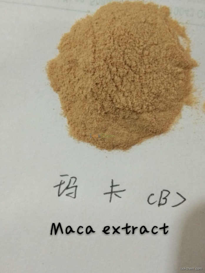 Herbal Extract 10:1 20:1 Maca Root Black Maca Extract Powder
