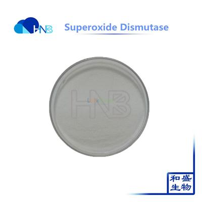 Factory Supply Superoxide dismutase in antioxidant SOD