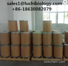 Factory Supply Food Grade Folic Acid CAS No. 59-30-3