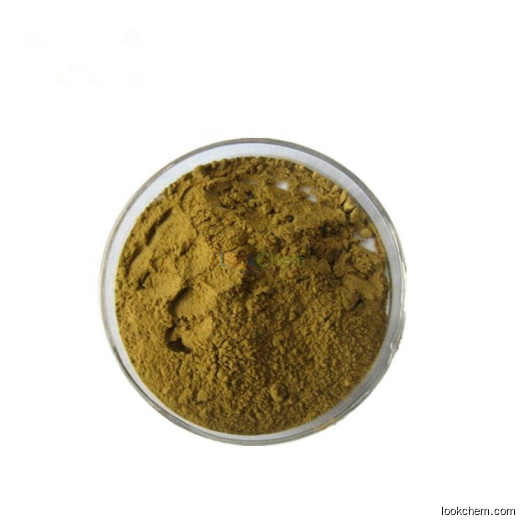 Natural extract epimedium extract 10% icariin powder CAS NO.489-32-7