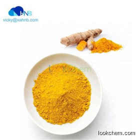 Top Quality Turmeric Root Extract Curcumin powder