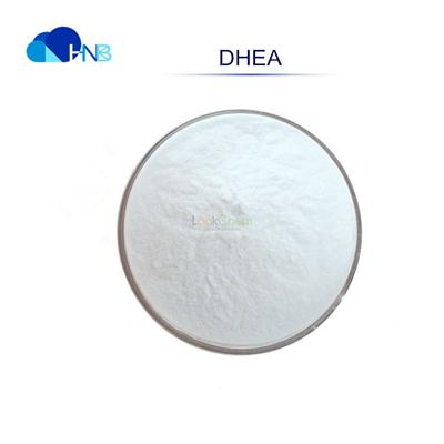 Factory directly Supply 99% DHEA Dehydroepiandrosterone powder CAS 53-43-0