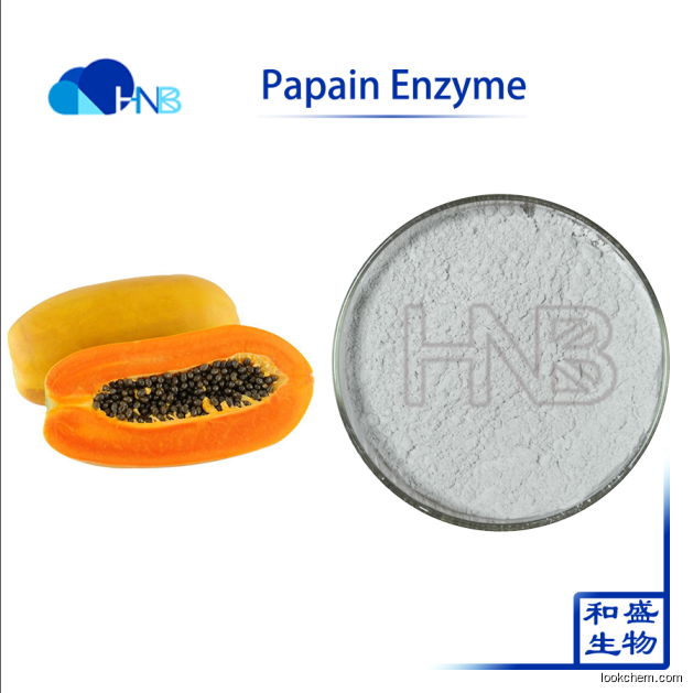 Hot Product High Activity Papain Enzyme