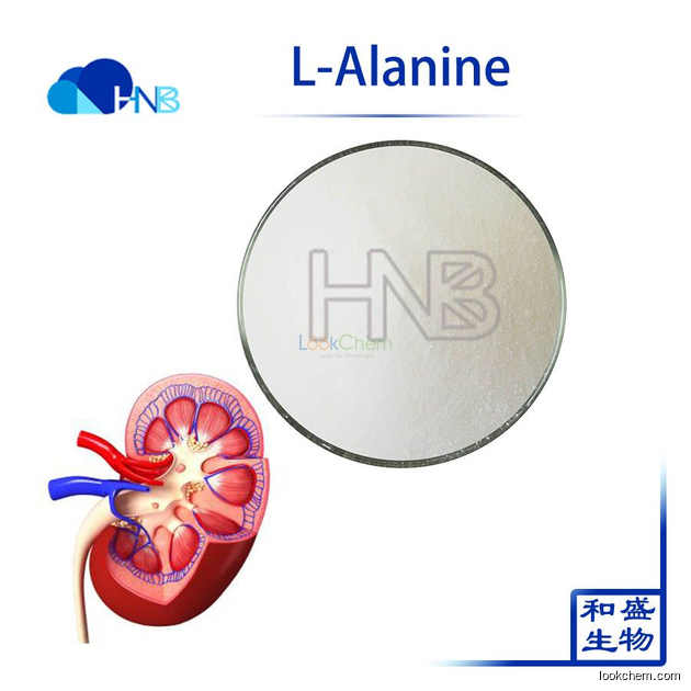 GMP Factory Supply  2-Aminopropanoic Acid L-Alanine for Preventing Kidney Stones, CAS No.:56-41-7