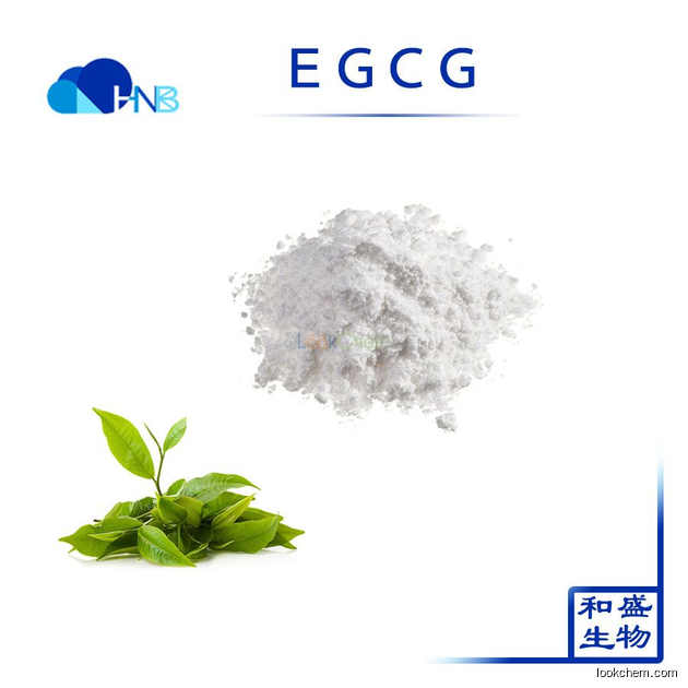 HNB Factory Supply 100% Pure Natural Greet Tea extract EGCG Epigallocatechin Gallate with best price CAS:989-51-5