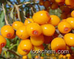 wide plant extract seabuckthorn seed oil