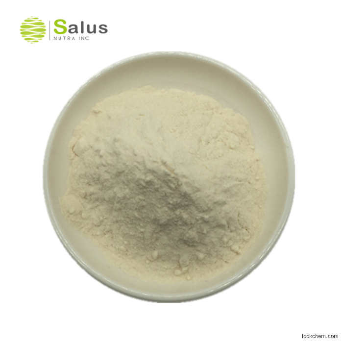 Food Grade Chitosan Powder