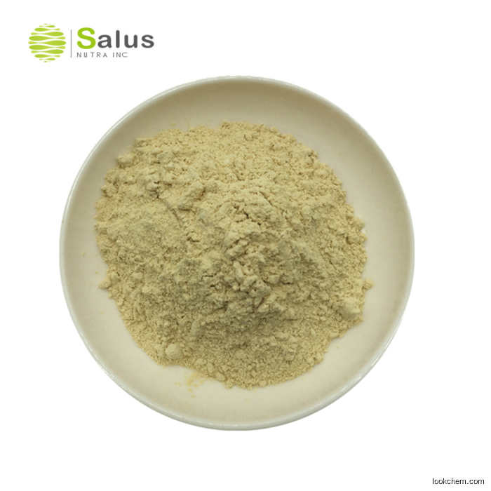 High Quality genistein 98% powder