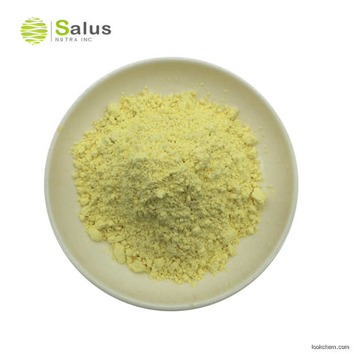 491-70-3 with immediately deliveryHot sale 491-70-3 Reliable quality of Luteolin