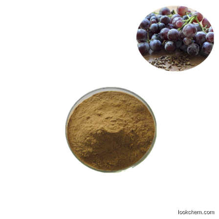grape seed extract OPC 95%(84929-27-1)
