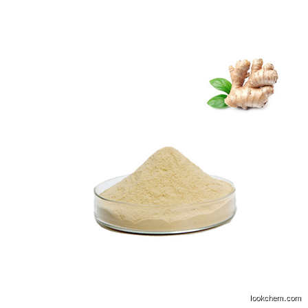 ginger extract gingerol 5% CAS No.: 23513-14-6