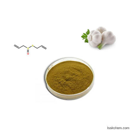 garlic extract Allicin 10% CAS No.: 539-86-6