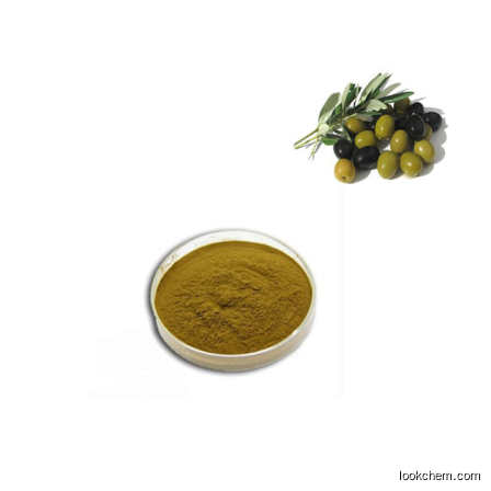 Olive leaf extract Oleuropein 20% 40% HPLC