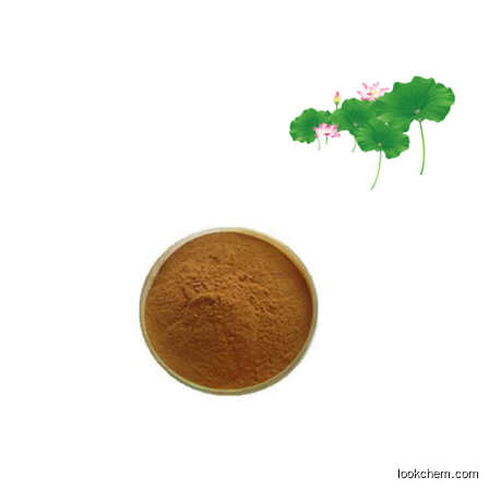 natural and pure organic Lotus leaf Nuciferine extract powder weight loss