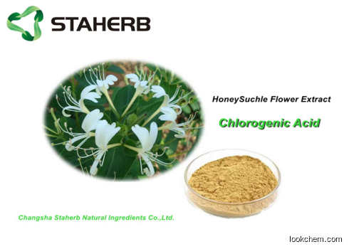 Pharma Grade Chlorogenic Acid Honeysuckle Flower Extract