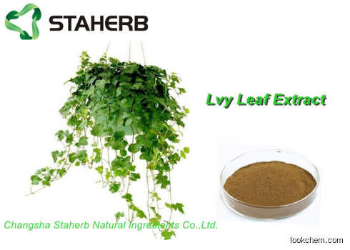 Ivy extract Antibacterial Plant Extracts Hederacoside c powder(84082-54-2)