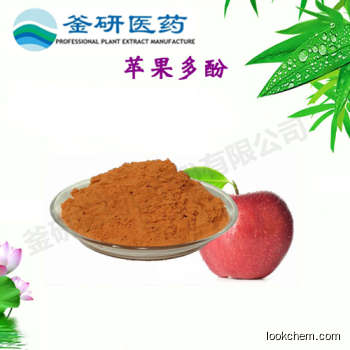 100% Apple Polyphenol CAS No.: 60-81-1
