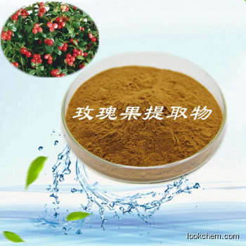 Rose L.Extract Polyphenol(60 CAS No.: 552-66-9