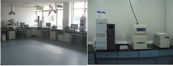 Triumph chemical Testing lab